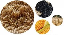 graos arroz feijao milho